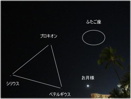 5q-8-45.jpg